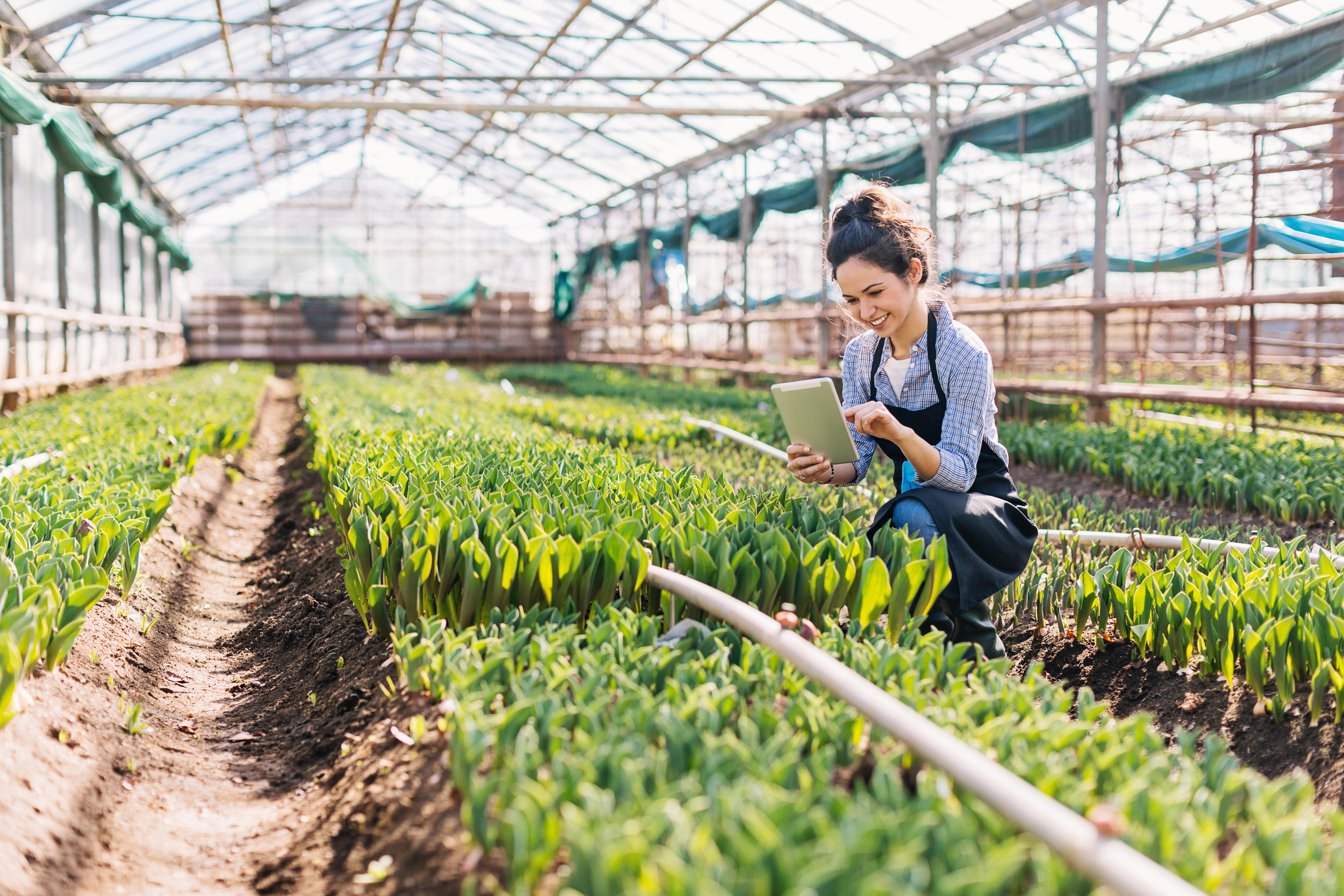 [Case] SENAR cria curso técnico a distância para o agronegócio com soluções  DOT